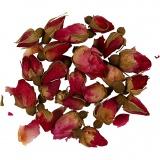 Trockenblumen, Dunkelpink, Rosenknospen, L: 1 - 2 cm, D: 0,6 - 1 cm, 1 Pck.