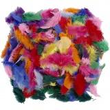 Federn, Sortierte Farben, Größe 7-8 cm, 50 g/ 1 Pck.