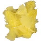 Federn, Gelb, Größe 7-8 cm, 500 g/ 1 Pck.