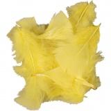 Federn, Gelb, Größe 7-8 cm, 50 g/ 1 Pck.