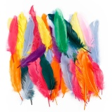 Federn, Sortierte Farben, L: 12-15 cm, 350 Stk/ 1 Pck