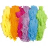 Federn, Sortierte Farben, L: 11-17 cm, 144 Bündl./ 1 Pck